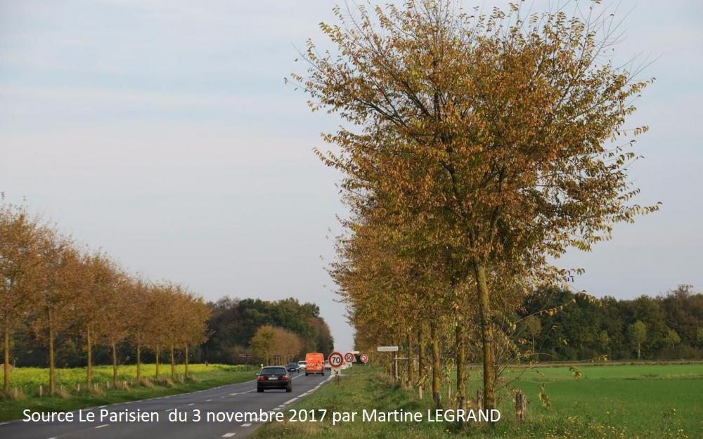 Evry-Grégy-sur-Yerres, ce vendredi. Le long de la D 619, le département a aligné des dizaines d'arbres sur un tronçon de 12 km entre Moissy-Cramayel et Yèbles, créant d'élégantes perspectives paysagères. LE PARISIEN /Marine Legrand
